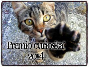 curiosità, gatto, catena, premio curiosità 2014