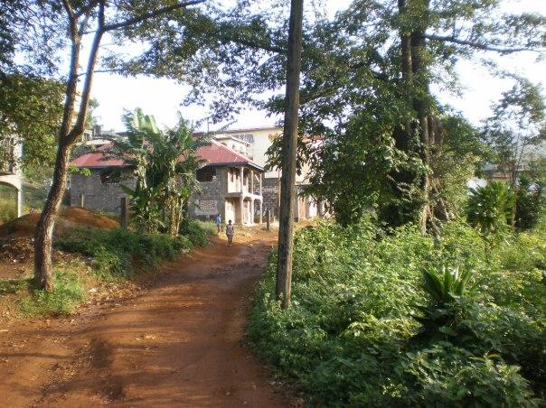 Sierra Leone, freetown, emergency, ebola