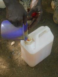 Infine il profumato nettare viene raccolto in una tanica pronto per essere bevuto.