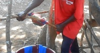 Poi si spreme ulteriormente la polpa rimasta con un torchio e si filtra il tutto.