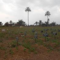 Rogbom Ebola cemetery - foto di Andrea Polo Un ricercatore in favela