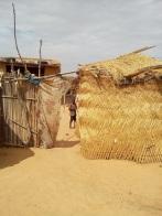 finestra sulla nigeria del nordest - oltre il deserto
