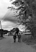 Finestra su Longacres Zambia: trentasei