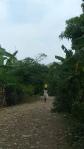 Finestra su Haiti Restavek lavorominorile